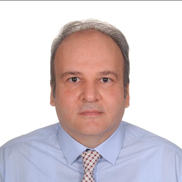 Prof. Dr. Tankut Acarman