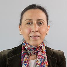 Prof. Dr. Y. Esra Albayrak